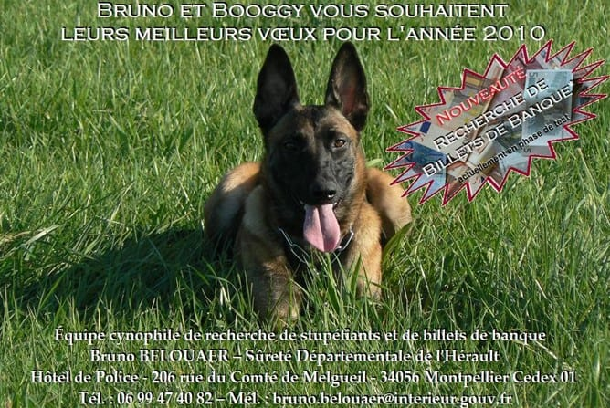 Congratulations Bruno and Booggy – French Police